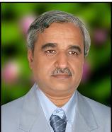 Dr. P. P. Raichurkar